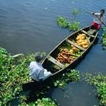 Viaggi India del sud e Kerala